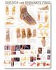 Reflexné zóny nohy a ruky